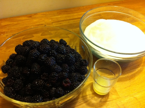 A picture of the Ingredients for the blackberry jam