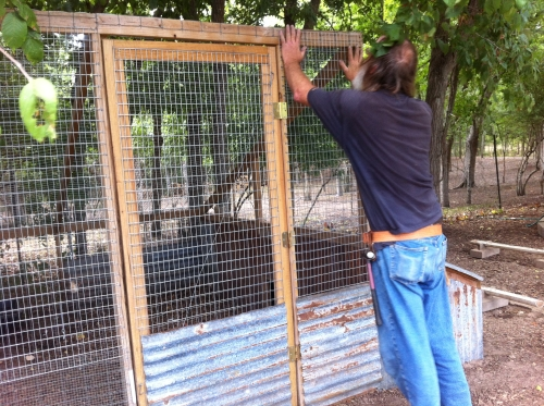 Installing smaller mesh on duck enclosure
