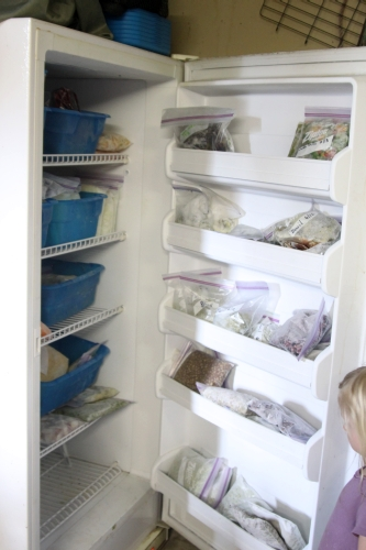 Our freezer full of summer produce